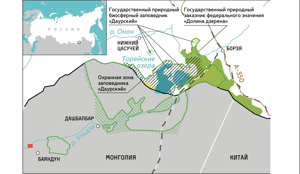 Изображение: greenpeace.ru