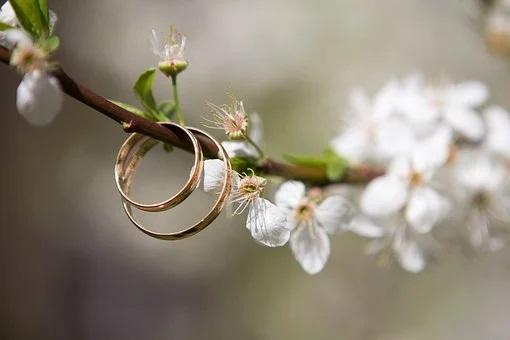 Fewer marriages began in Transbaikalia
