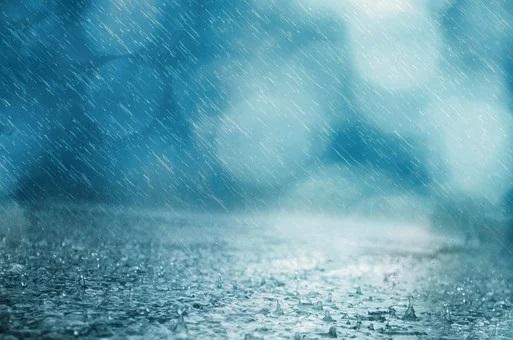 Heavy rain and wind will ruin the weather on Sakhalin