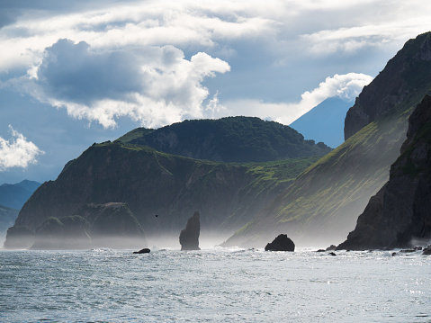TFR is leaning towards the natural cause of water pollution in Kamchatka