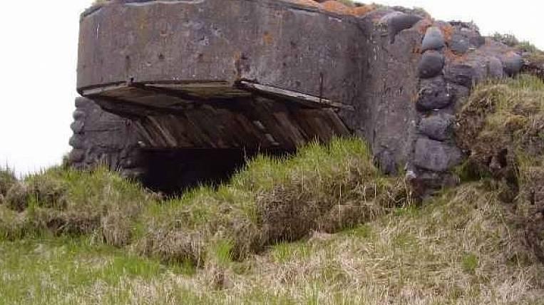 Экспедиция Минобороны иРГО завершила поиски накурильском острове Матуа
