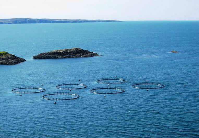 Aquaculture on the march