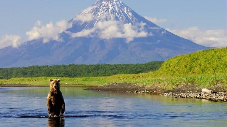 Заповедных территорий на Камчатке может стать больше