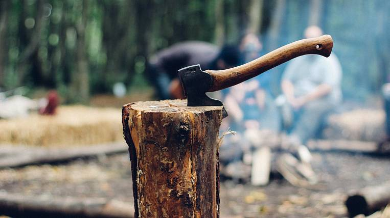 """Organized crime group of """"black lumberjacks"""" who sawed themselves for 1,2 million rubles was caught in Transbaikalia"""