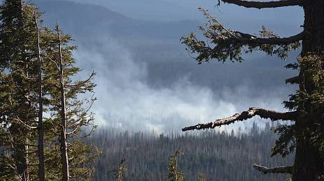 Transbaikalia meets forest fires without money and people