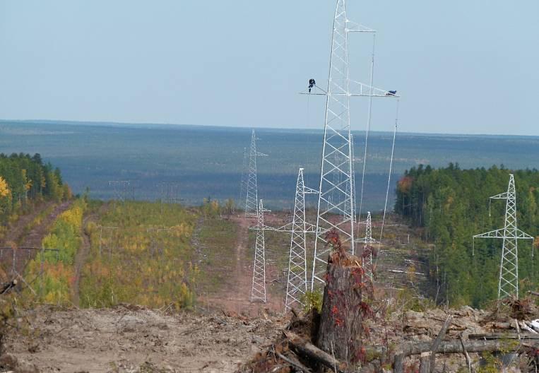 Yakut bulbs insure against blackout