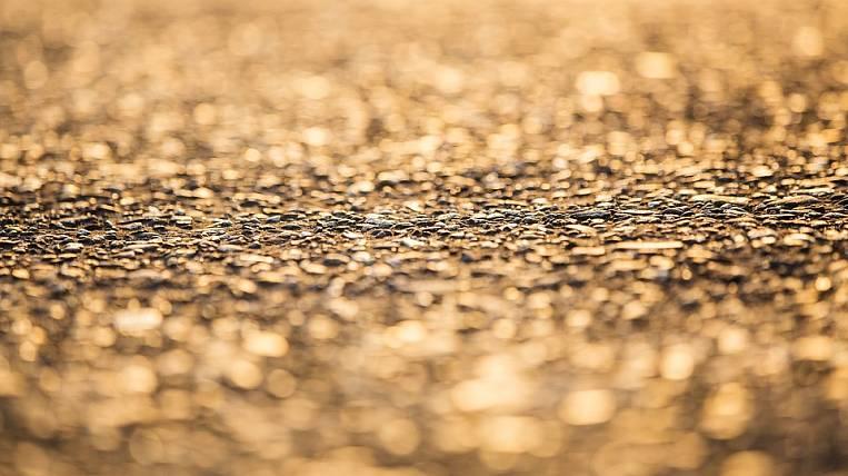 Две компании планируют участвовать ваукционе поместорождению Сухой Лог