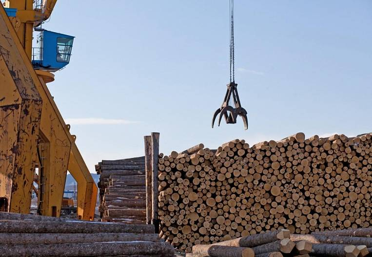 From the timber industry they squeeze cellulose