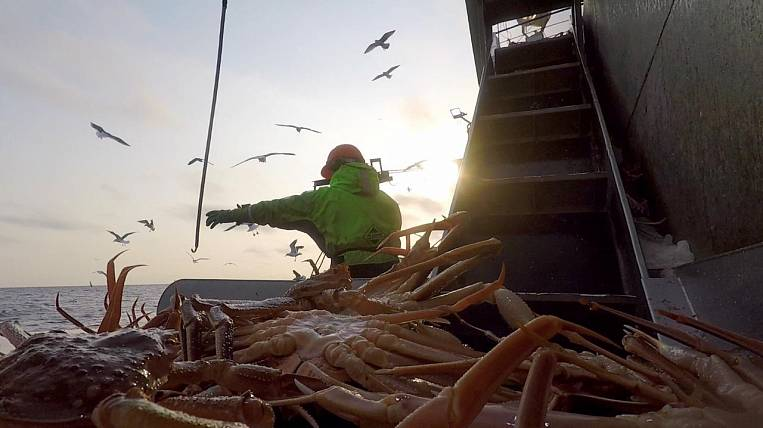 """GC """"Russian Crab"""" harvested 13 thousand tons of crab in 2020"""