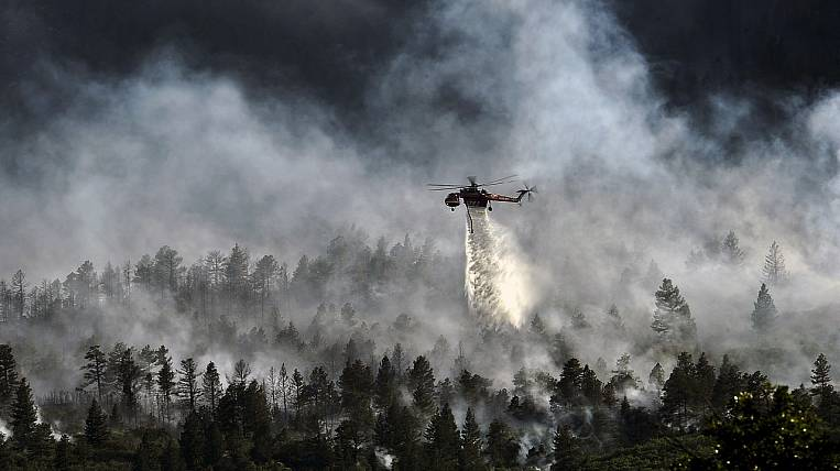 Three criminal cases opened in Kolyma after forest fires