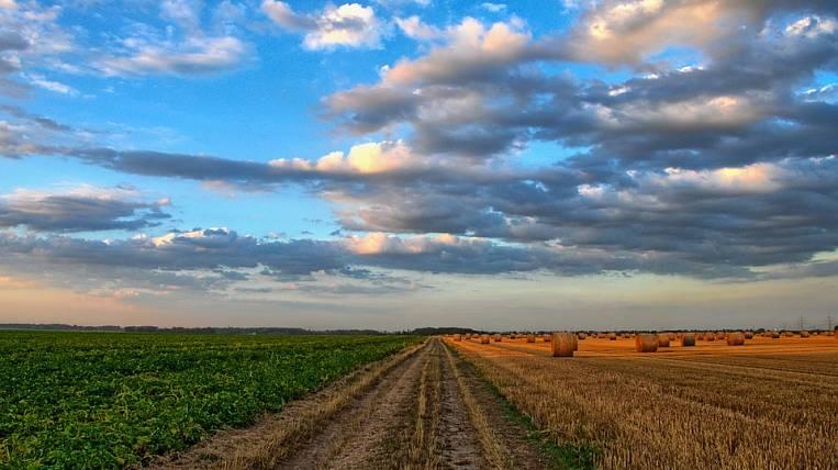ВТБ будет выдавать кредиты аграриям под 5 годовых