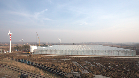 Thousand tons of fresh vegetables for the Far East