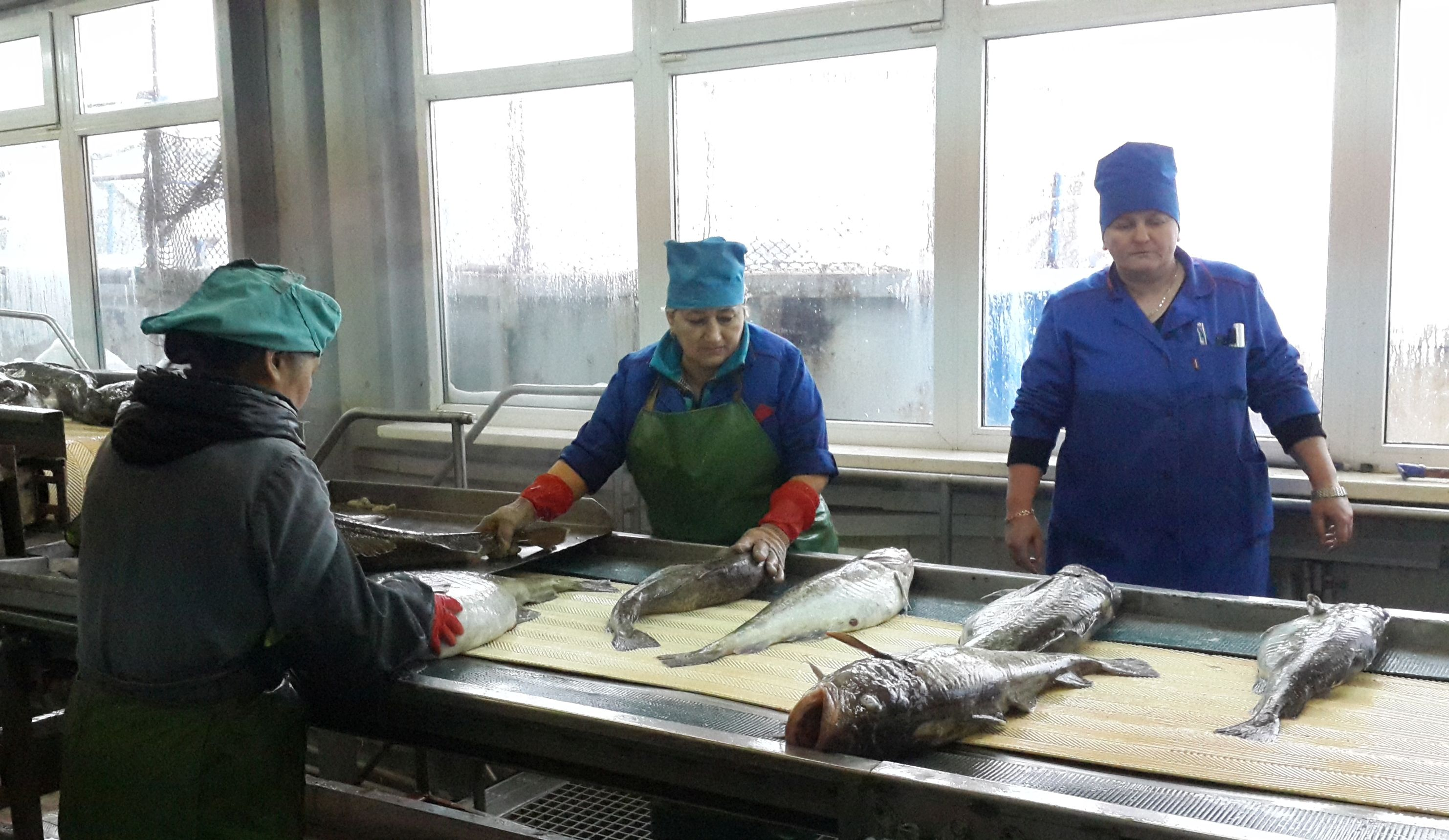 Trutnev: it is necessary to increase fish processing in Russia